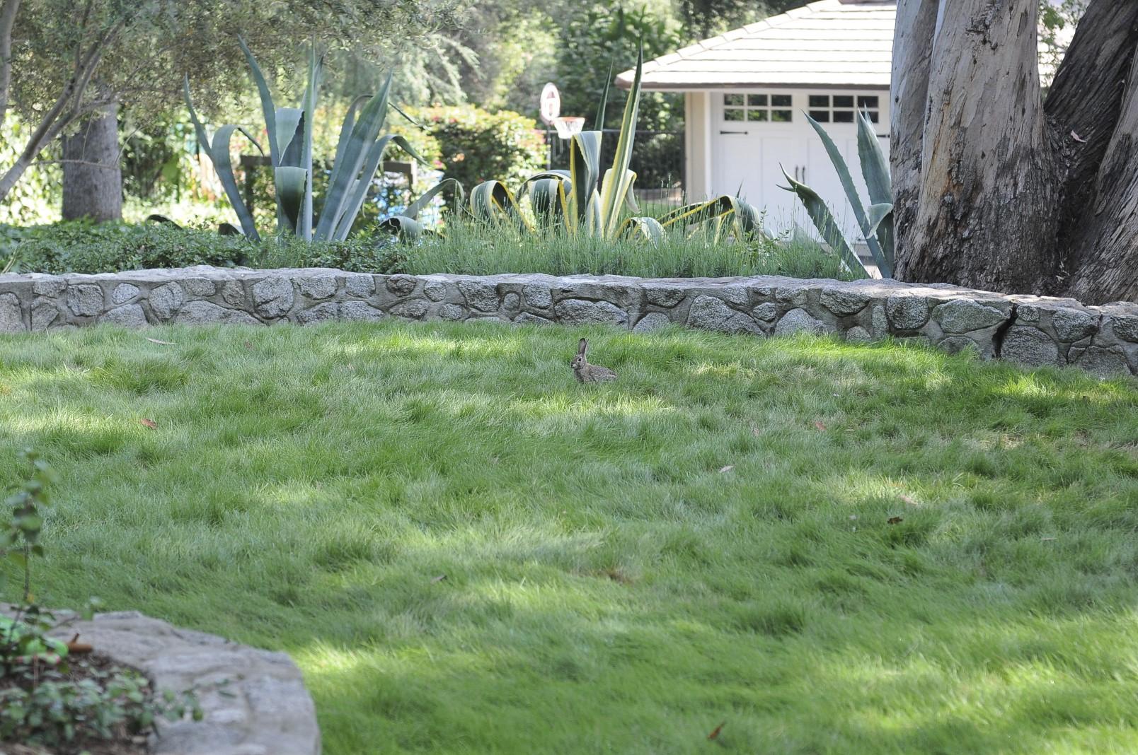 The Tour – Hamilton Gardens Zone Native Garden Design on butterfly garden zone 9, garden design home, garden design canada, fall garden zone 9, garden design zone 6, garden design zone 5, garden design zone 4, garden design zone 8,